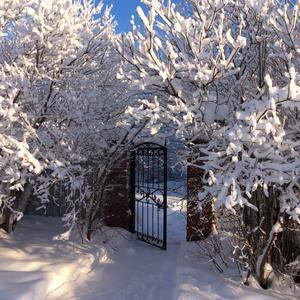 Калитка на даче в заснеженный морозный зимний день выглядит сказочно