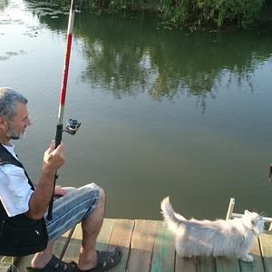 Два мужика на рыбалке