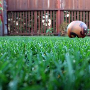 ...а снится нам трава-трава у дома...зеленая, зеленая трава)))