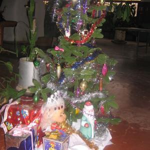 Новогодние подарки под Ёлочкой