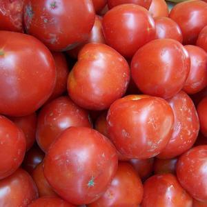 """Это, конечно, не на конкурс """"Самый крупный помидор"""", но в салат пойдёт!"""