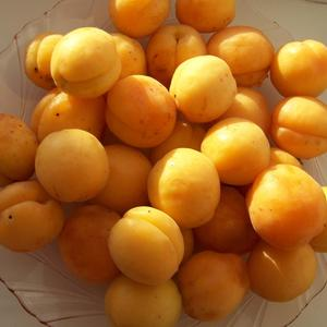 Оранжевое настроение