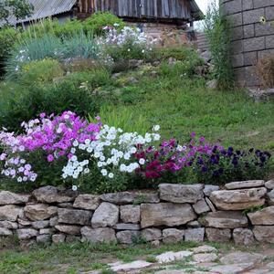 Ландшафт и камни подошли друг другу
