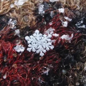 Лежит красавица снежинка