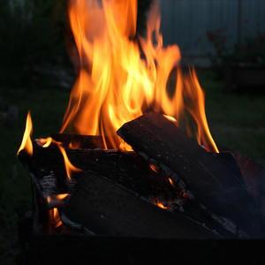 Люблю я на огонь смотреть и треск их слушать и согреть их пламенем свою судьбу - я все плохое здесь сожгу...