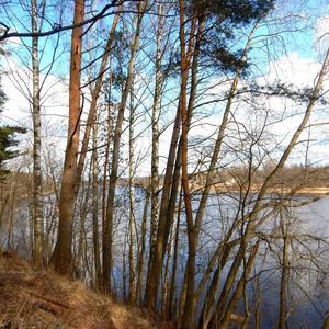 Лед растаял на реке