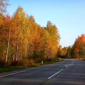По дороге мчусь домой и любуюсь красотой