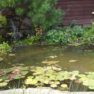 Хотите душевного равновесия - постройте фонтан на даче. Шум ручья, гладь воды - успокаивает, расслабляет