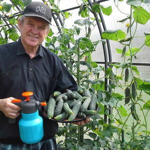 Хотите хороший урожай огурцов - купите опрыскиватель в ОBI!