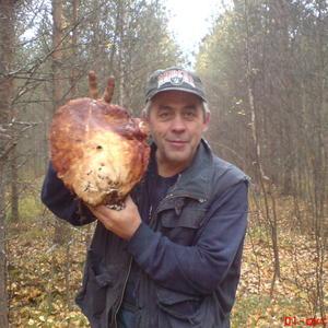 Вот такой вот белый гриб