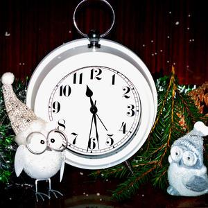 Совушки в ожидании нового года