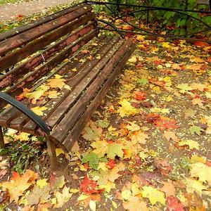 Вот присядем, отдохнем, и опять гулять пойдем
