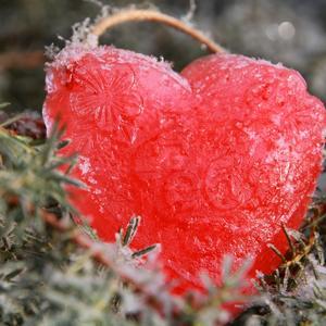 Согрей моё сердце и оно растает...