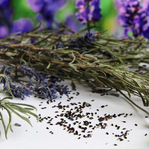 Блестящие семена для блестящей клумбы (лаванда)
