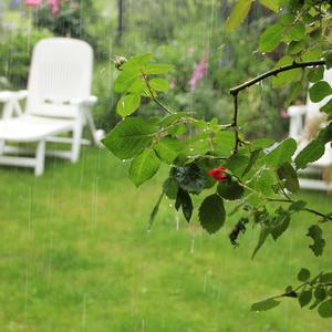 А дождь всё плакал...