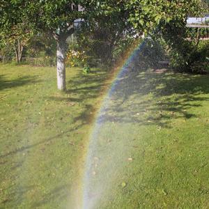 Я рисую на газоне радугу-дугу