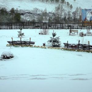Вечером клумба, утром снег