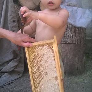 Ну и как этот мёд теперь кушать?