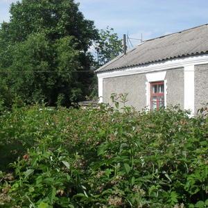 Малина и дом