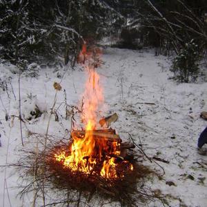 Тепло и холод встретились на лесной опушке