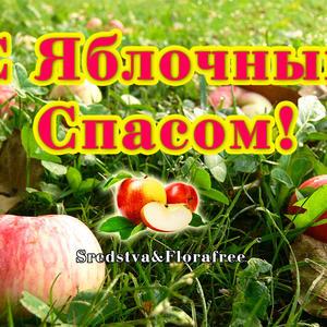 С Праздником Яблочного Спаса!