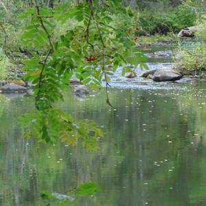 Северная речушка