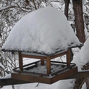 Снег на крыше птичьего домика