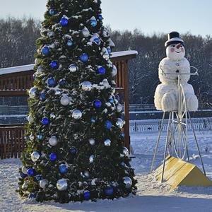 Шарики на ёлочке весело блестят. Снеговик улыбчивый охранять их рад...