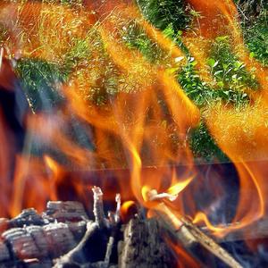 Под треск поленьев, тающих в костре, согреемся в холодный день осенний...