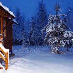 Зимняя дача...