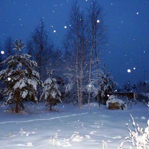 Новогодняя погода на даче...