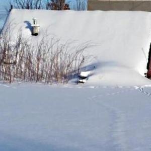 """Погребок под снежной """"шубкой"""""""