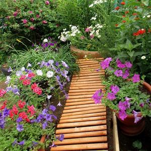 Нравится мне новая дорожка садовая
