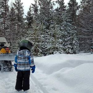 Зимняя прогулка по лесу