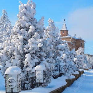 Зимние красОты нашего города