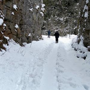 Прошлись...Наследили... Снега на них свежего не напасёшься...
