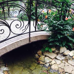 И мост, и пруд, и кампсис цветет =)