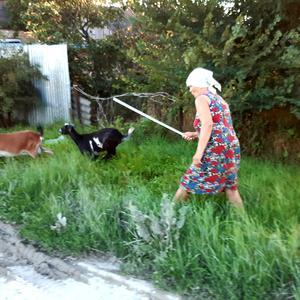 Из жизни дачников ... и коз  =)