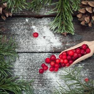 """Клюква на сахарной пудре в """"новогоднем"""" окружении"""