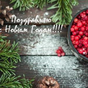 Клюквенное поздравление с праздником!!!