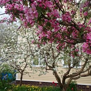 Уже мечтаю о весне!