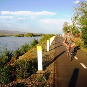 Вдоль велосипедной дорожки