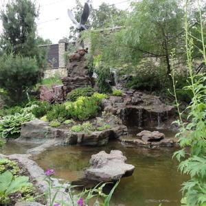 Живописный ручей с водопадом