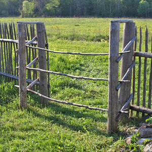 Калитка и забор в лесной деревне Медниково