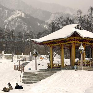 Беседка в буддийском стиле. Аршан, Бурятия