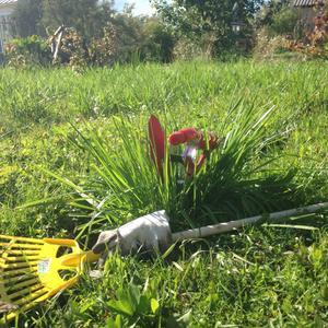 Инвентарь для работы в саду