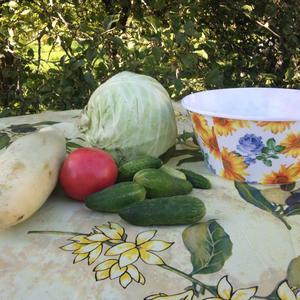 Ингридиенты для легкого летнего салата