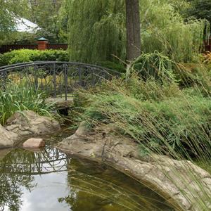 Декоративный прудик и мост через ручей