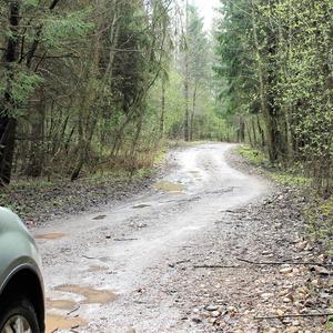 По мокрой от дождя дороге приеду я на дачу раньше всех