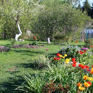 Яркие краски мая в саду